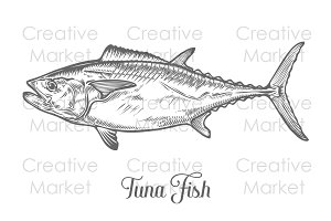 Tuna fish vintage hand drawn