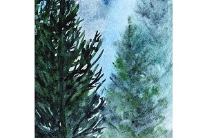 Watercolor winter wood forest pine