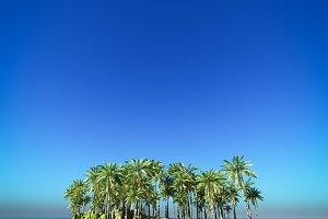 Tropical island on the blue sea