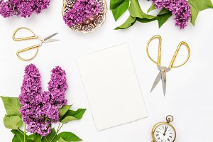 Sketchbook lilac flowers office tool