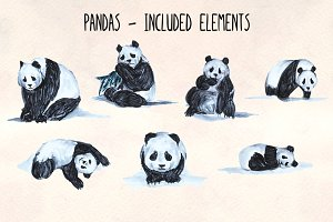 7 Hand Painted Panda Graphics