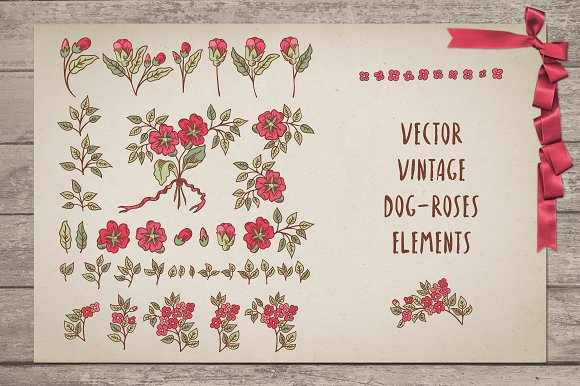 Vintage Dog-Rose vector pack in Patterns - product preview 1