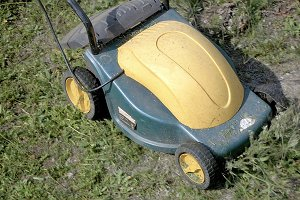 Mowing grass in the garden with electrical machine