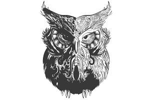 Owl Shadowesd Black
