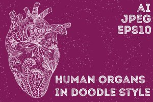 Human organs in doodle style