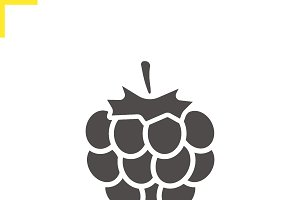 Raspberry icon. Vector