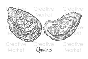 Oysters seafood set hand drawn