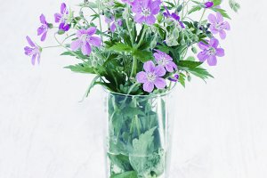 Violet wild flowers in a glass vase