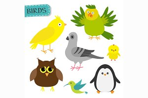 Cute cartoon bird set