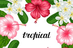 Backgrounds with tropical flowers.