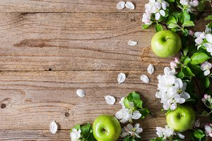 Wooden background with spring bloom