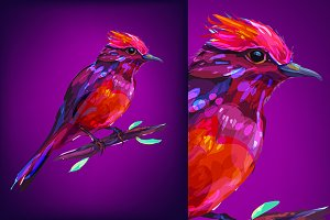 Red bird (Birds set. Vector)