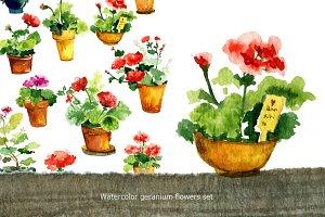 Watercolor geranium flowers Set
