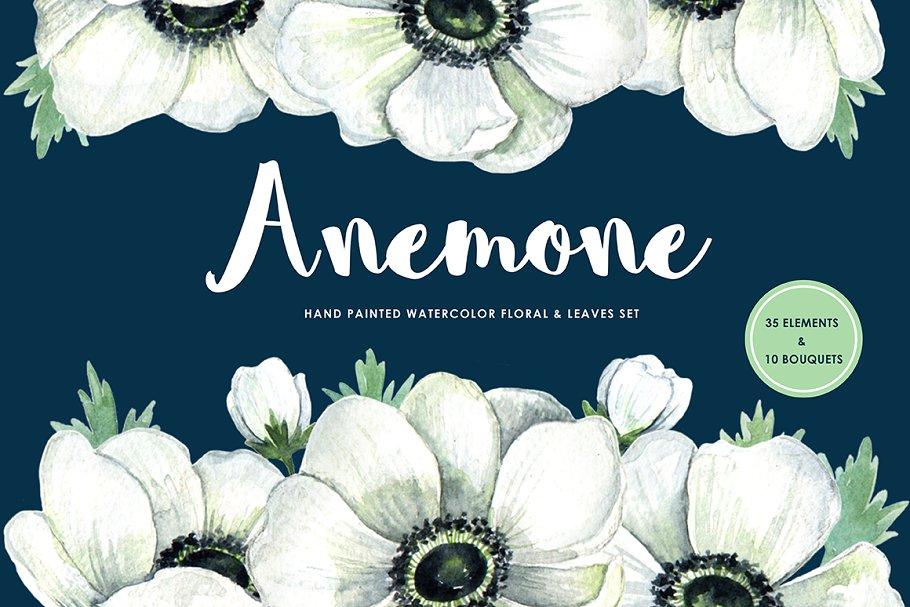 Anemone handpainted floral set