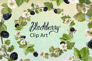 Watercolor Blackberries Clip Art