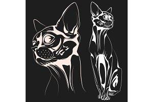 Cat1 vector
