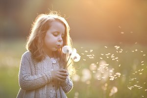 beautiful girl blowing dandelion