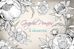 Graphic Peonies - peonies clip art