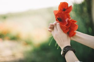 woman hand with poppies