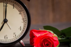 Roses and alarm clock