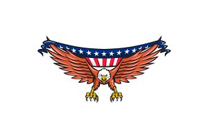 American Eagle Swooping USA Flag
