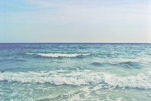 Shell Island Ocean View