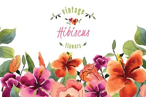 №133 Hibiscus watercolor