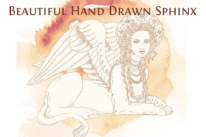 Beautiful Hand Drawn Sphinx