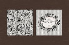 Vector vintage set with B&W lilies