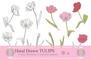 Hand Drawn Tulip Flowers