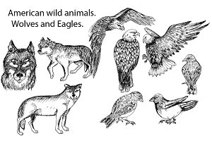 Hand drawn wild animals.