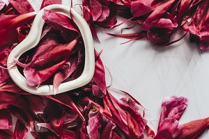 Porcelain heart with peony petals