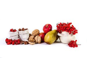 Autumn still life of fruit apples pears nuts viburnum isolated o