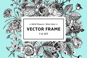 Vector floral frame. B&W, mint color