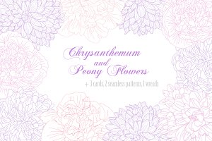 Chrysanthemum and Peony Flowers