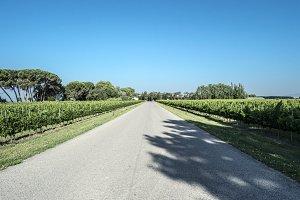 Camino por la ruta del canal