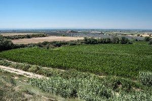El pla de Lleida