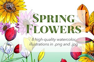 Spring Flowers Watercolors