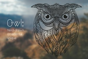Tribal Owl