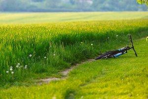 Mountain bike laying near the field or meadow.