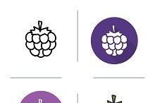 Raspberry icons. Vector
