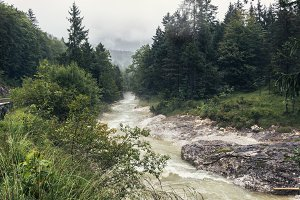 Mighty river stream in a mountain forest at a rainy day. Beautiful natural landscape.