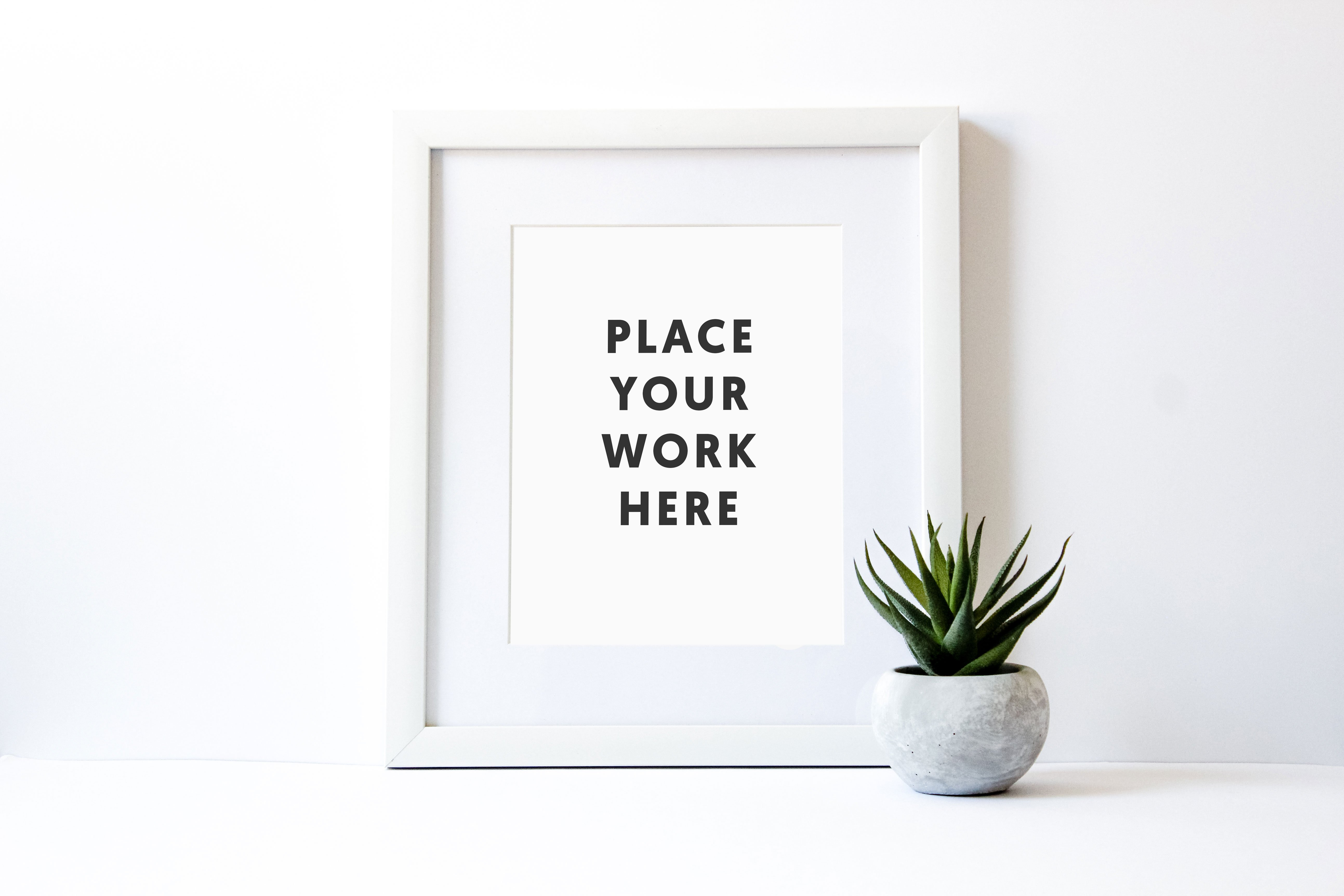 styled white frame with succulent product mockups creative market - White Frame
