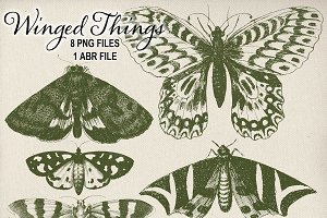 Vintage Winged Things Brushes & PNGs