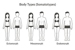 Bodytypes illustration