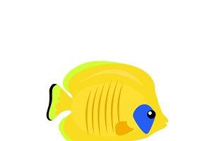 Set Ocean Fish