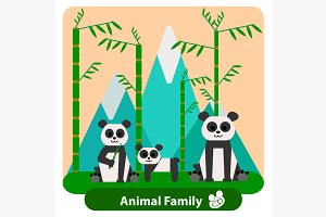 Family panda on the background