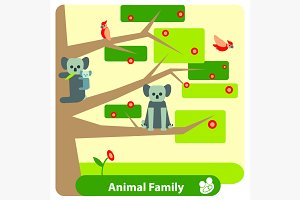Family of koalas