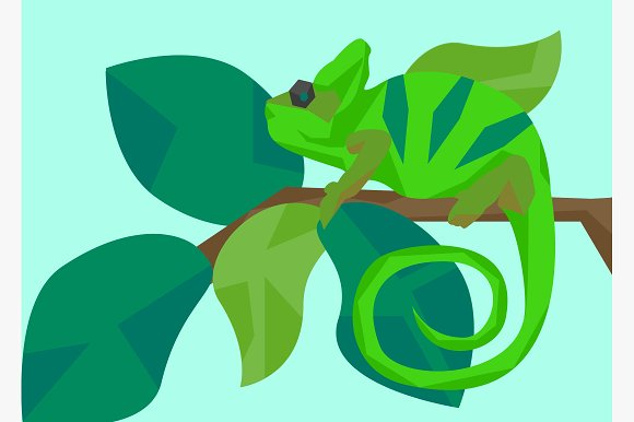 Chameleon masquerades as leaves