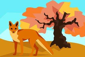 Fox on hill with oak